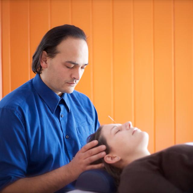 Acupuncture Apitherapy Adrien